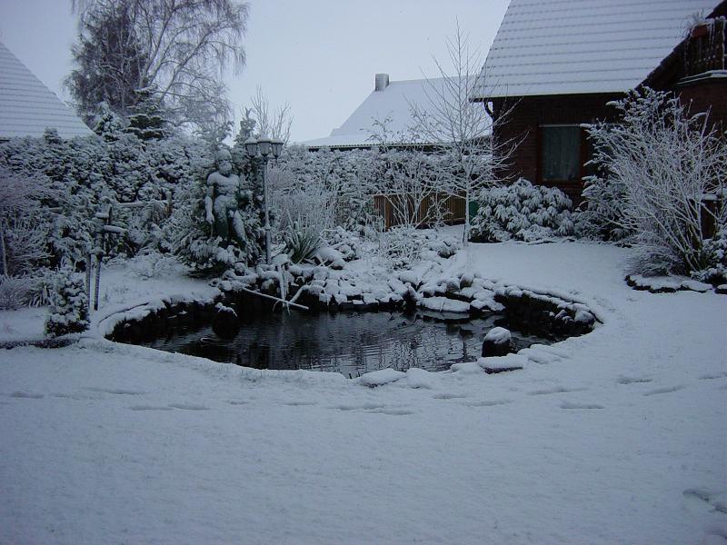 Teich nach winter garten design ideen um ihr zuhause zu for Teich im winter